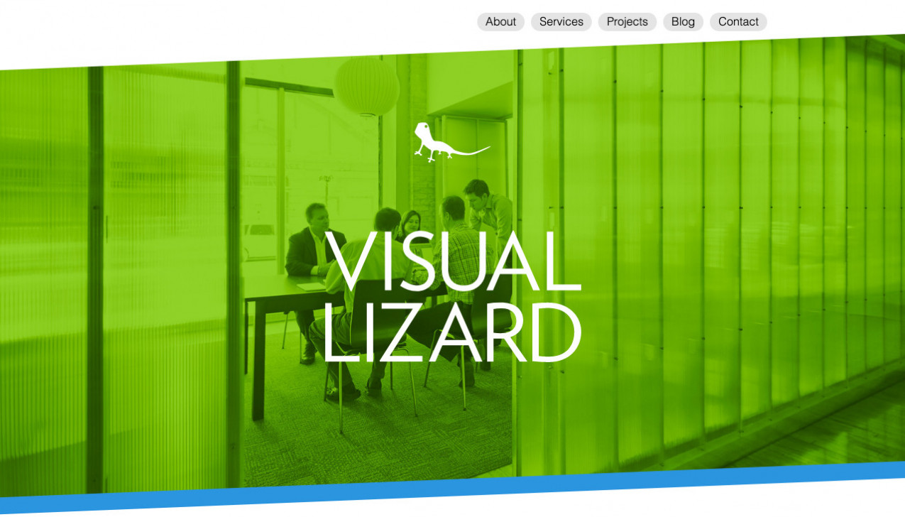 """Visual Lizard"" Project Main Screenshot"